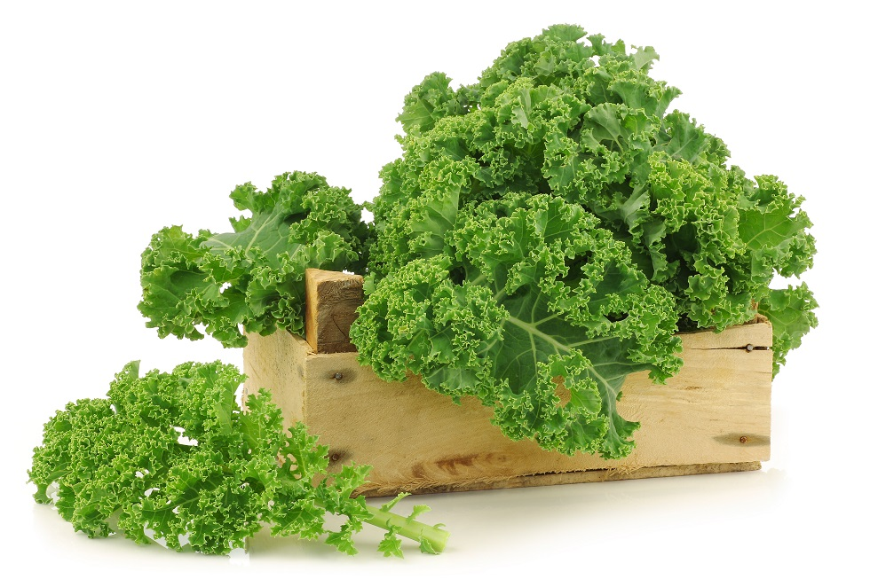 Taste the Cancer-Fighting Power of Kale