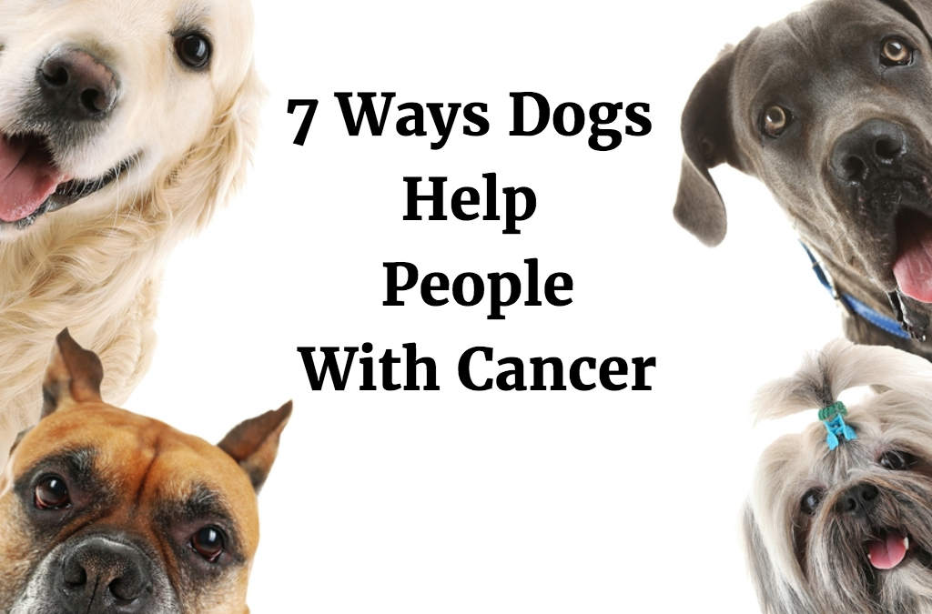7 Ways Dogs Help People with Cancer