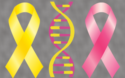 bladder breast cancer