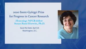 2020 Szent-Györgyi Prize for Progress in Cancer Research Horwitz