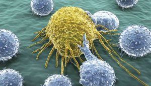 New Discovery May Significantly Broaden the Applicability T-Cell Immunotherapy