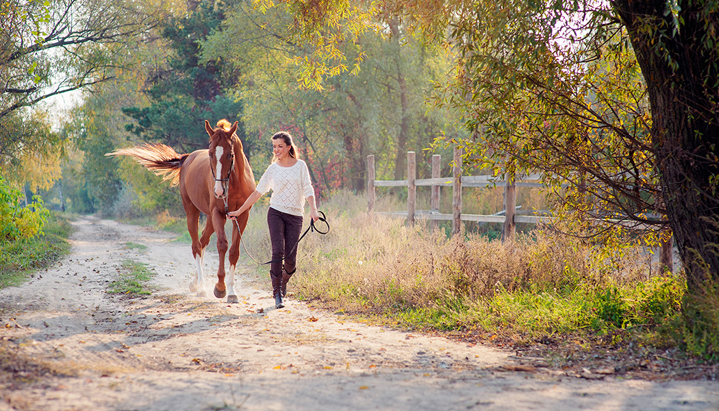 Equine Therapy Cancer Patients